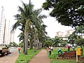 Av. 85 st. Marista - Goiânia - panoramio.jpg