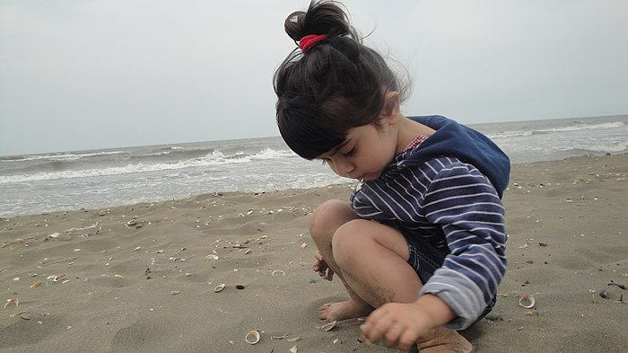Az girl on the Caspian seaside, e-citizen.jpg
