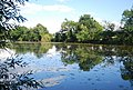 Ballast Lake, Haysden Country Park - geograph.org.uk - 2045001.jpg