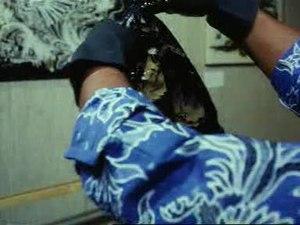 File:Bambang Oetoro demonstreert batikkunst in eerste batikgalerie Weeknummer, 77-50 - Open Beelden - 16528.ogv
