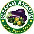 Barangay Magsalisi.jpg