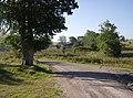 Barn near the Bratton access point, Imber Range - geograph.org.uk - 537601.jpg