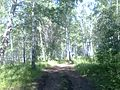 Baymaksky District, Republic of Bashkortostan, Russia - panoramio (8).jpg