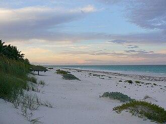 Harbour Island, Bahamas - Image: Beachsunsetdog
