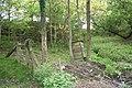 Beehive in the woods - geograph.org.uk - 809217.jpg