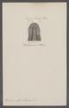 Belemnites obtusus - - Print - Iconographia Zoologica - Special Collections University of Amsterdam - UBAINV0274 090 08 0018.tif