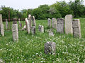 Belz Jewish cemetery.jpg