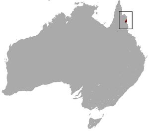 Bennett's tree-kangaroo - Image: Bennett's Tree Kangaroo area