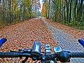 Bikeway along the Śvislač river in Miensk - panoramio - Andrej Kuźniečyk (1).jpg