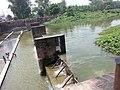 Bilaspur.bhakra dam - panoramio.jpg