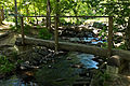 Billy Goat A Log Bridge.jpg