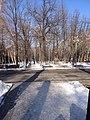Birinchi May District, Bishkek, Kyrgyzstan - panoramio (10).jpg