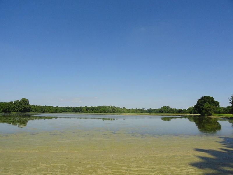 La plaine de la Marne entre Bisseuil et Plivot inondée en juin 2013.