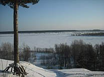 Biysk river down to AB.JPG