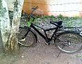 Black Body Bicycle.jpg