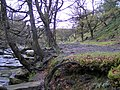 Black Clough - geograph.org.uk - 380235.jpg