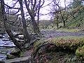 Black Clough - geograph.org.uk - 380235.jpg