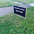 Black lives matter yardsign.jpg