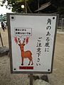 "Board showing ""Be careful with deers with Horns"".jpg"
