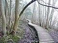 Board walk on the riverside path, Glassonby - geograph.org.uk - 1168809.jpg