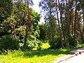 Botanical Garden in Kyiv May 2016 2.jpg