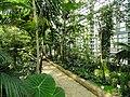Botanischer Garten Freiburg - DSC06299.jpg