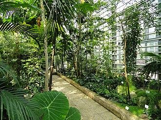 University of Freiburg Faculty of Biology - Freiburg Botanic Garden, greenhouse