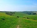 Bow Hill, near Stanmer - geograph.org.uk - 48413.jpg