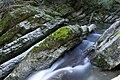 Breggia River 20091025 3321.jpg