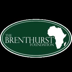 Image result for The Brenthurst Foundation