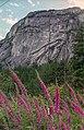 Bridal Veil Falls Provincial Park 01(js) (British Columbia).jpg