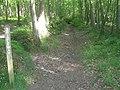 Bridleway in Oldbury Wood - geograph.org.uk - 1321757.jpg
