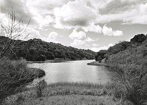 Briones Hills - Briones Reservoir in the Briones Hills.