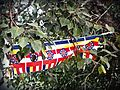 Buddhist flags among bodhi leaves at Mahabodhi Temple in Bodhgaya (31962868104).jpg