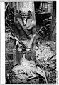 Bundesarchiv Bild 183-S89884, Berlin, Neues Museum, Ruine, Ägyptische Statue.jpg