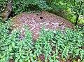Bunker in Roden 5.jpg