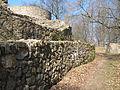 Burgruine Tannenberg Mauerringe.JPG