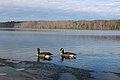 Burke lake park 022.JPG
