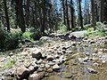 Burnt Corral Creek - panoramio.jpg
