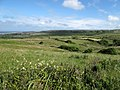 Burren - near Ballynalacken Castle - panoramio.jpg