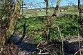 Burridge Farm - geograph.org.uk - 407409.jpg