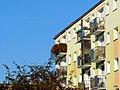 Bydgoszcz - widok kwiatów na moim balkonie 2012 - 10 - 18 - panoramio.jpg