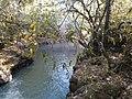 Córrego da Faxina - panoramio (3).jpg