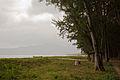 Côn Đảo National Park.jpg