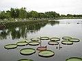 Công viên Văn Thánh Miếu Cao Lãnh.jpg