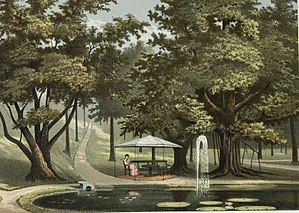 Caspar Georg Carl Reinwardt -  Lithograph of Lily pond and fountain at the Bogor Botanical Gardens, 1880s