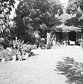 COLLECTIE TROPENMUSEUM Tuin achter het huis van J.H. Ritman op Tanah Abang Barat 36 in Djakarta TMnr 60030269.jpg