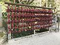 Calabashes in Dazaifu Temman Shrine 2.jpg