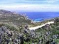 Calvi Revellata plage de l'Alga.jpg