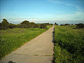 Candlestick Point Recreation Area (4437586632).jpg